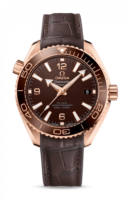 PLANET OCEAN 600M CO-AXIAL MASTER CHRONOMETER - CHOCOLATE - 215.63.40.20.13.001