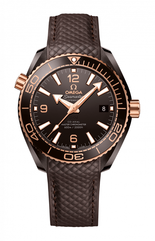PLANET OCEAN 600M OMEGA CO-AXIAL MASTER CHRONOMETER 39,5 MM - 215.62.40.20.13.001